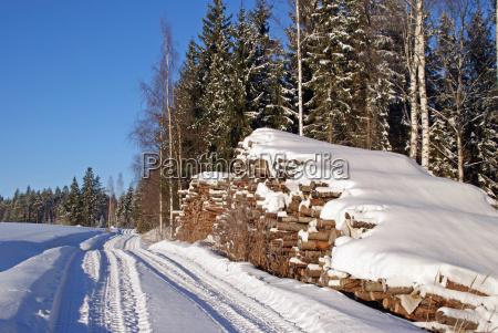 inverno trasporto legname pila impilati di