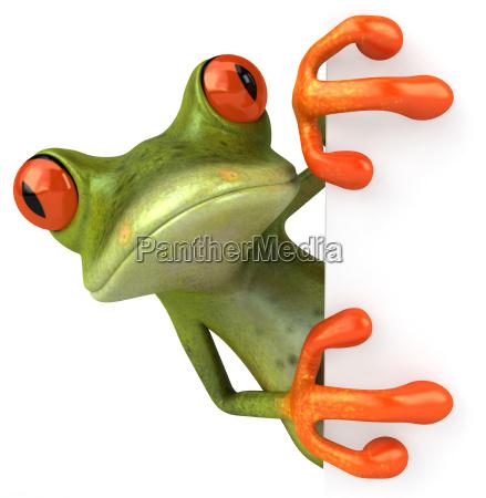 umwelt tier illustration frosch tropische tropisch