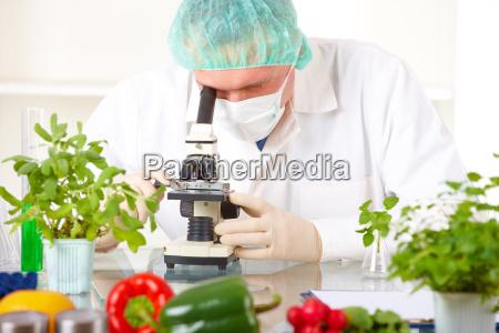 forscher der ein gvo gemuese im