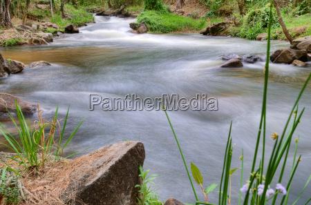 river or stream nature landscape
