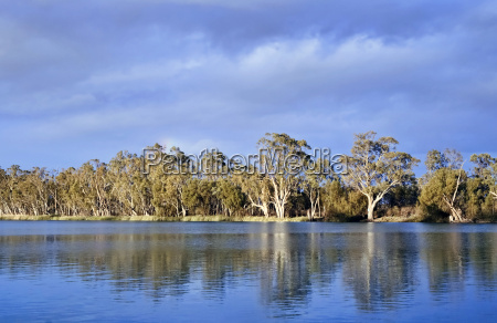 river murray south australia