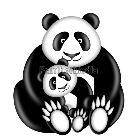 mutter und baby pandabaer