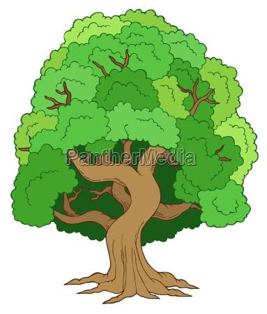 foglia singolo esistere vivere albero frondoso
