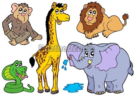 verschiedene, afrikanische, tiere - 4396529