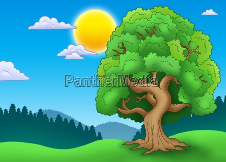 foglia esistere vivere albero paesaggio natura
