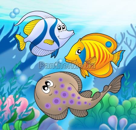 cute marine animals 2