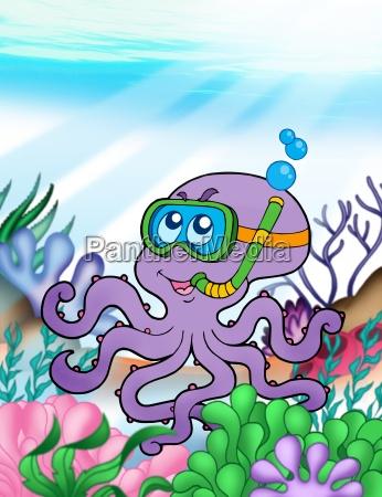 octopus diver underwater