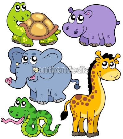 afrikanische tiere sammlung 4