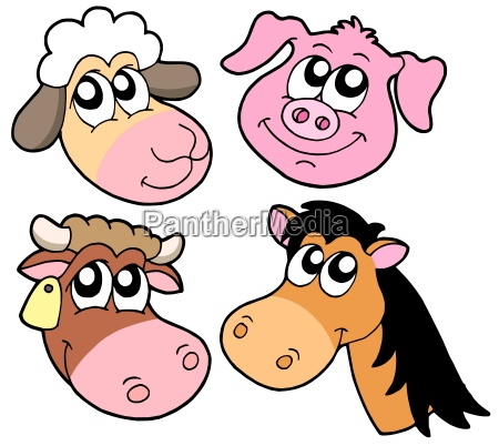 farm animals details collection