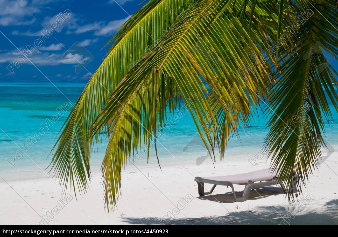 einsamer strand mit liegestuhl unter palmen stockfoto 4450923 bildagentur panthermedia. Black Bedroom Furniture Sets. Home Design Ideas