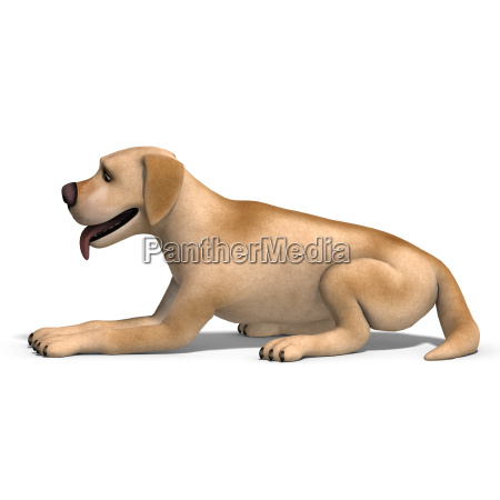 very funny cartoon dog is a