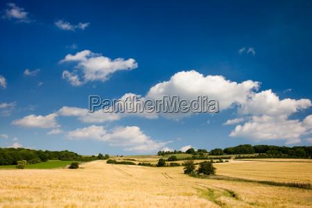 landscape at dorndorf