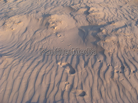 sand tracks baltic sea