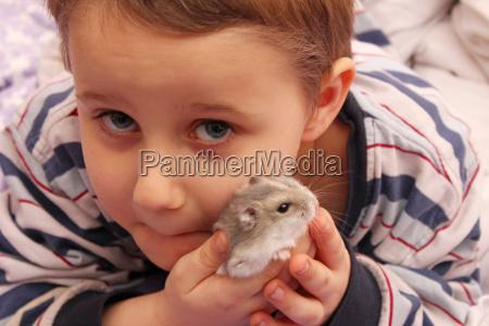 mein, hamster - 4520239