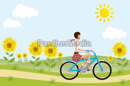 fahrrad maedchen auf sonnenblumen