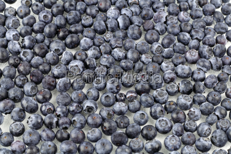 blueberries on glass
