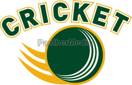 cricket sportball fliegt