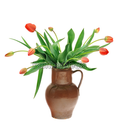 red tulips in old fashioned jug