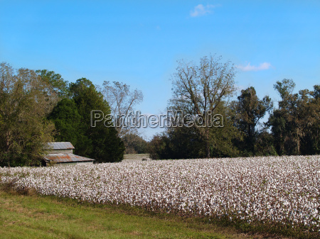 landwirtschaft ackerbau feld usa scheune farm