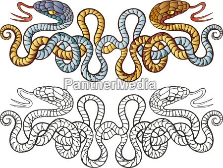 schlangen tattoo design