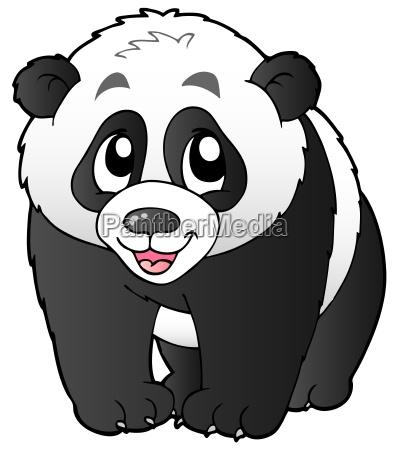 cute small panda