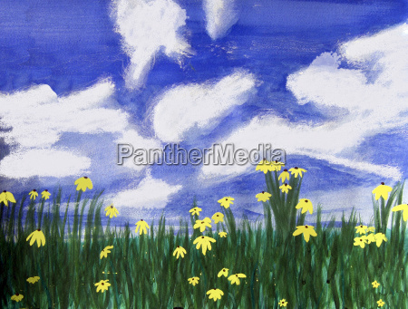 flowers bright field florida