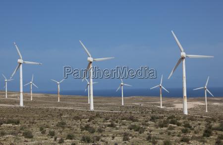 wind turbines in the desert