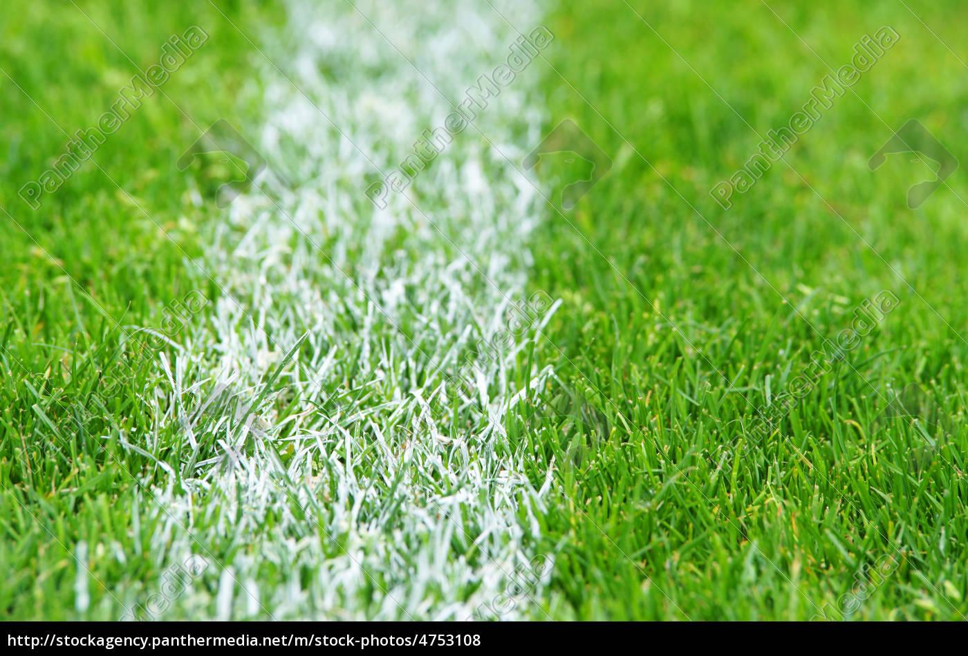 soccer grass fu ball rasen lizenzfreies foto 4753108 bildagentur panthermedia. Black Bedroom Furniture Sets. Home Design Ideas
