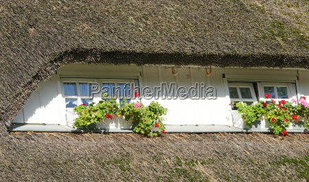 set house gaube with windows and