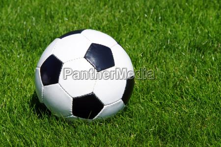 fussball soccer