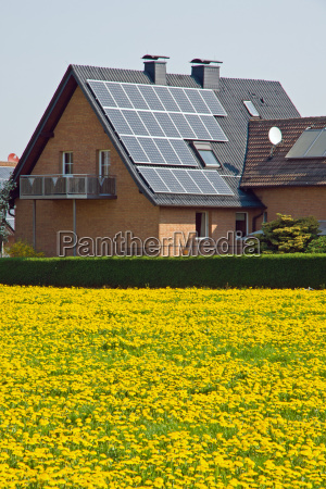 house with solar cells and dandelions