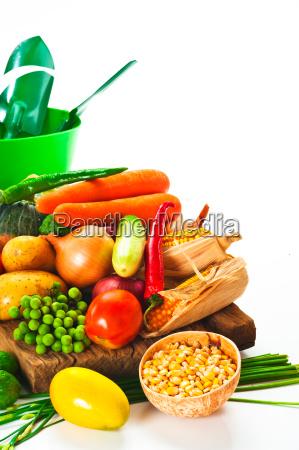 gemuese kohl tomaten gurken zwiebeln salat