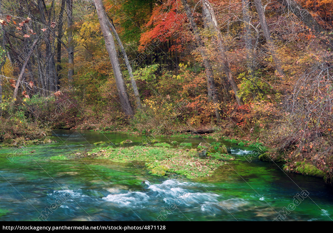 autumn, leaves, and, trees, on, river - 4871128