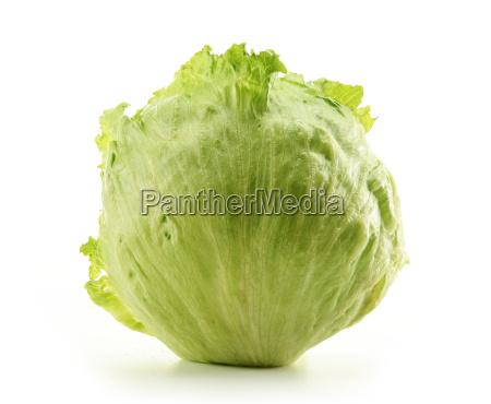 crisphead eisberg salat isoliert auf weiss