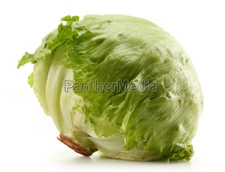 knusprig iceberg lettuce isoliert auf weiss
