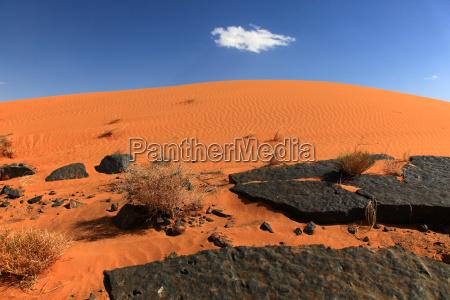 sahara wueste in marokko