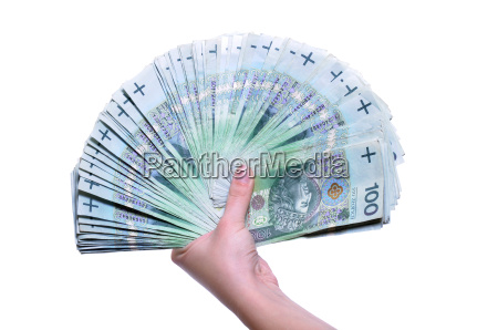 polish banknotes in hand pln isolated