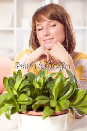 home plants care