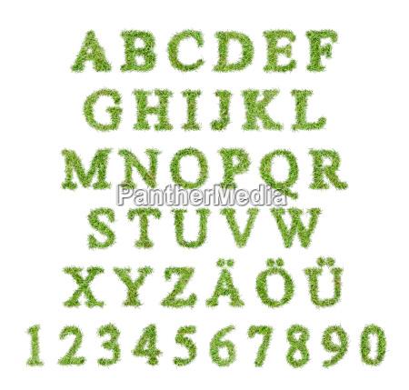 alphabet aus buchstaben in einer rasenform
