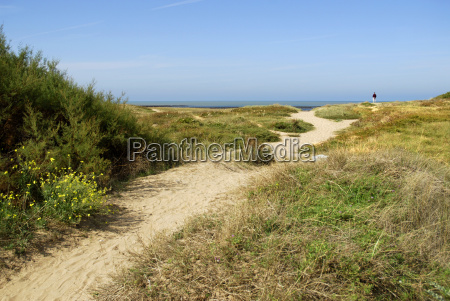 dune at la cotiniere in france