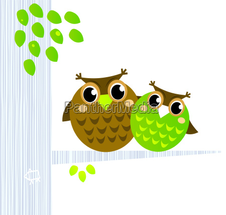 two cute owls sitting on the