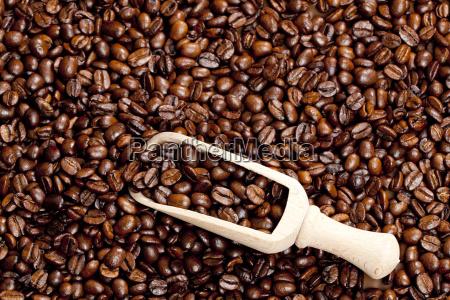 stillleben von kaffeebohnen