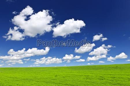 gruene huegel unter blauem himmel