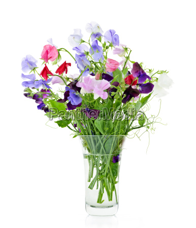 bouquet of sweet pea flowers in