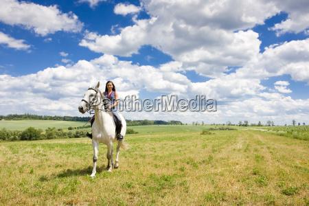 reitsport, auf, dem, pferderücken - 5381113