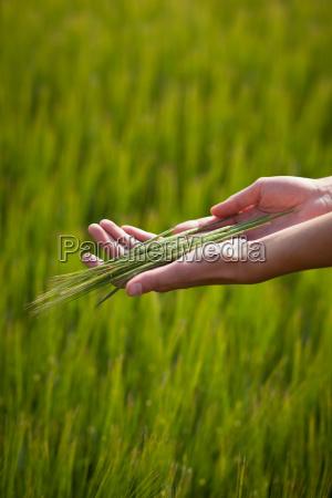 symbolische geste darauf hindeutet fruchtbarkeit fuelle