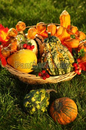 allaperto zucca stagione ringraziamento abitudine stagionale