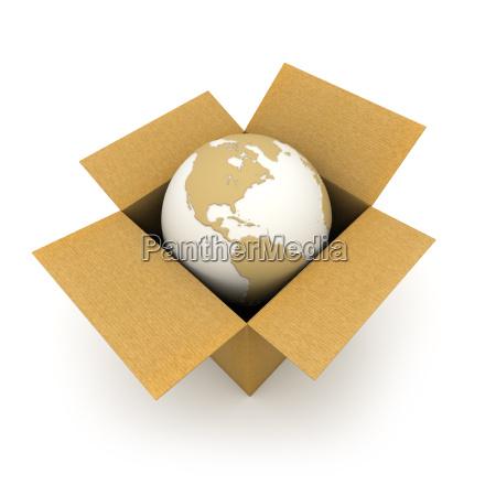 the world in a carton