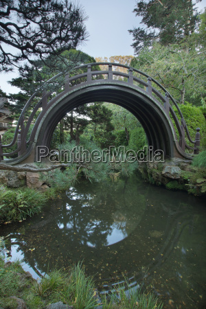 wooden bridge at japanese garden in