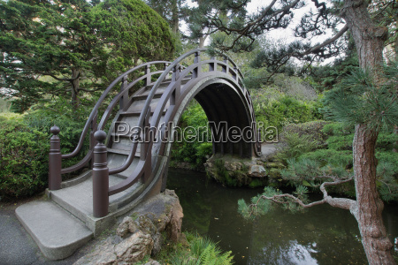 wooden bridge at japanese garden in